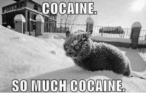 Cocaines: COCAINE  SO MUCH COCAINE