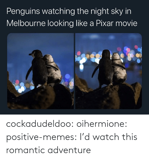 Watch This: cockadudeldoo: oihermione:   positive-memes: I'd watch this romantic adventure