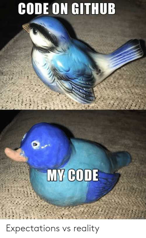 Vs Reality: CODE ON GITHUB  MY CODE  made on imgu Expectations vs reality