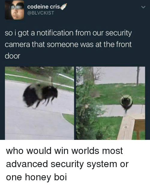 Camera, Codeine, and Got: codeine cris  @BLVCKIST  so i got a notification from our security  camera that someone was at the front  door who would win worlds most advanced security system or one honey boi