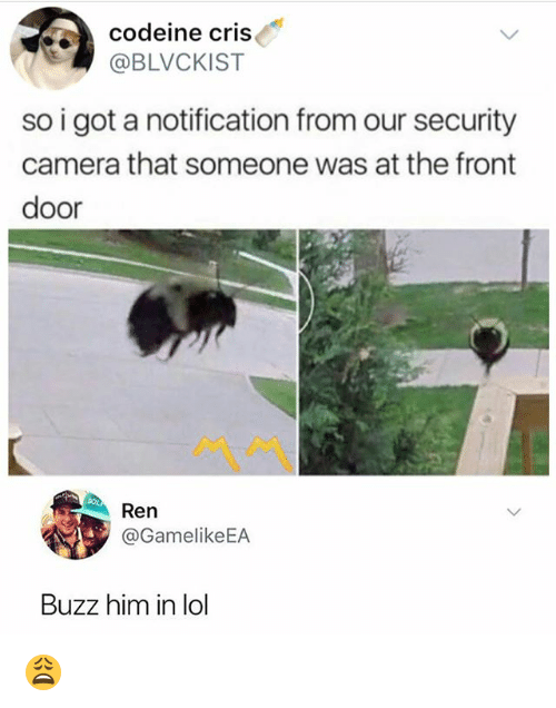 Lol, Memes, and Camera: codeine cris  @BLVCKIST  so i got a notification from our security  camera that someone was at the front  door  ペペ  Ren  @GamelikeEA  Buzz him in lol 😩