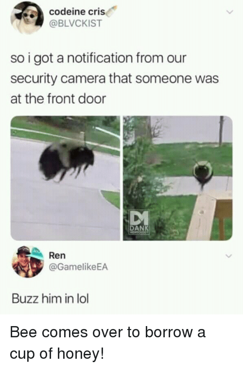 Lol, Camera, and Codeine: codeine cris  @BLVCKIST  so i got a notification from our  security camera that someone was  at the front door  MVA  DAN  Ren  @GamelikeEA  Buzz him in lol Bee comes over to borrow a cup of honey!