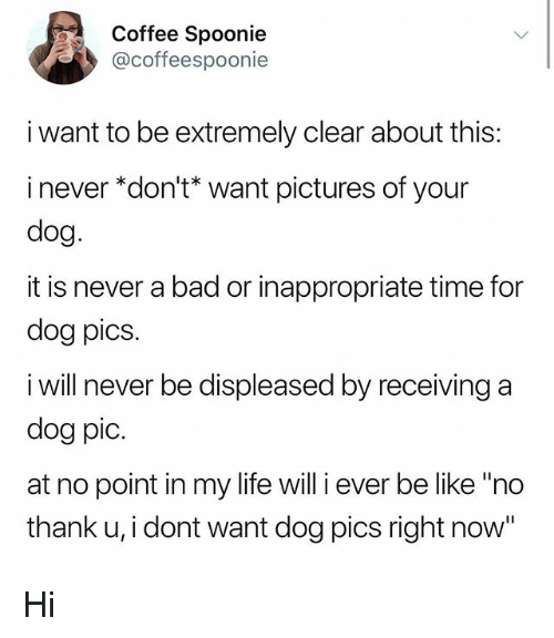 "Bad, Be Like, and Life: Coffee Spoonie  @coffeespoonie  i want to be extremely clear about this:  i never ""don't* want pictures of your  dog  it is never a bad or inappropriate time for  dog pics  i will never be displeased by receiving a  dog pic.  at no point in my life will i ever be like ""ndo  thank u, i dont want dog pics right now"" Hi"