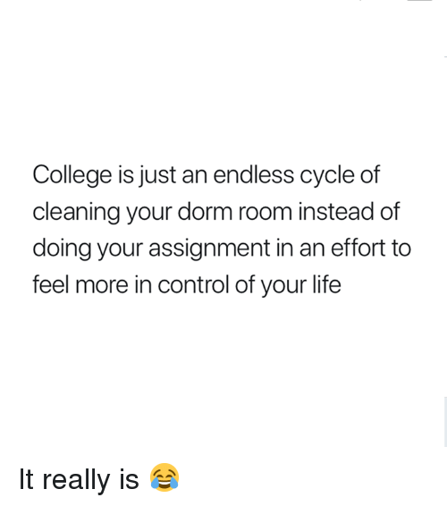 College, Life, and Control: College is just an endless cycle of  cleaning your dorm room instead of  doing your assignment in an effort to  feel more in control of your life It really is 😂