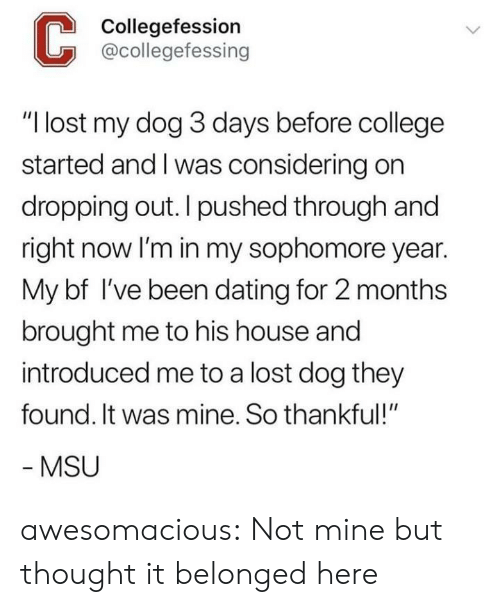 """College, Dating, and Tumblr: Collegefession  @collegefessing  """"I lost my dog 3 days before college  started and I was considering on  dropping out. I pushed through and  right now lI'm in my sophomore year.  My bf I've been dating for 2 months  brought me to his house and  introduced me to a lost dog they  found. It was mine. So thankful!""""  MSU awesomacious:  Not mine but thought it belonged here"""