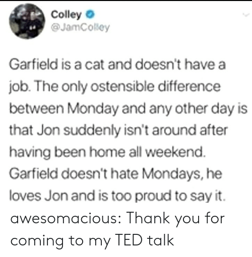 ted talk: Colley  @JamCosey  4.  Garfield is a cat and doesn't have a  job. The only ostensible difference  between Monday and any other day is  that Jon suddenly isn't around after  having been home all weekend  Garfield doesn't hate Mondays, he  loves Jon and is too proud to say it. awesomacious:  Thank you for coming to my TED talk