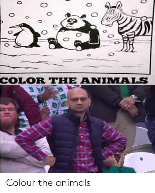 Colour: Colour the animals