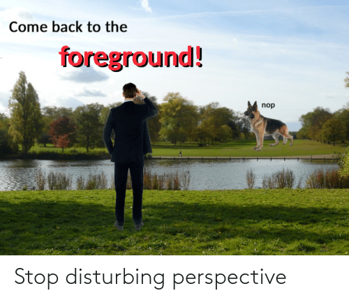 Back, Perspective, and Stop: Come back to the  foreground!  nop Stop disturbing perspective