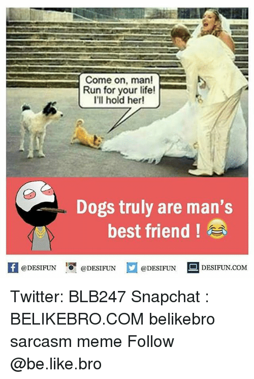 run for your life: Come on, man!  Run for your life!  I'll hold her!  Dogs truly are man's  best friend  @DESIFUN  @DESIFUN  @DESIFUN  DESIFUN COM Twitter: BLB247 Snapchat : BELIKEBRO.COM belikebro sarcasm meme Follow @be.like.bro