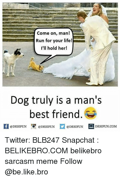 run for your life: Come on, man!  Run for your life!  I'll hold her!  Dog truly is a man's  best friend  f eDESTPUNDEDESIUN.COM  @DESIFUN DESIFUN.COM Twitter: BLB247 Snapchat : BELIKEBRO.COM belikebro sarcasm meme Follow @be.like.bro