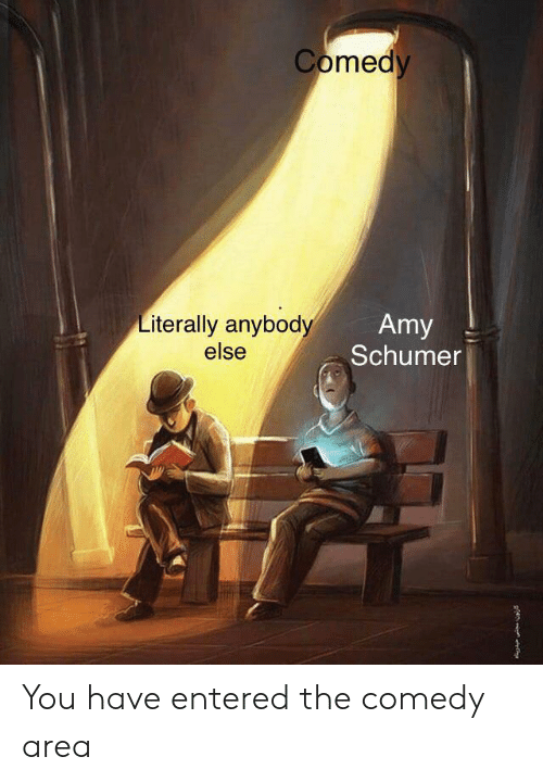 amy: Comedy  Literally anybody  else  Amy  Schumer You have entered the comedy area