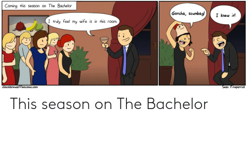 Bachelor: Coming this season on The Bachelor  Gotcha, scumbag!  I knew it!  I truly feel my wife is in this room.  Sean Fitzpatrick  chocolatewafflescomic.com This season on The Bachelor