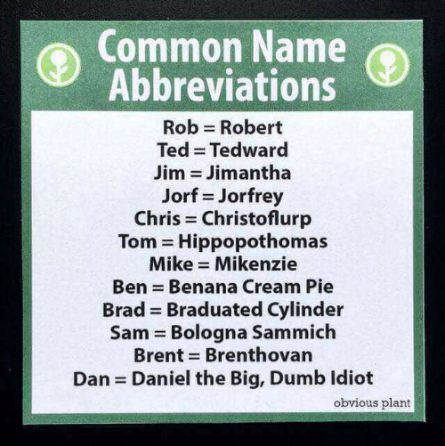 sammich: Common Name  Abbreviations  Rob Robert  Ted Tedward  Jim = Jim antha  Jorf = Jorfrey  Chris Christoflurp  Tom = Hippop°thomas  Mike Mikenzie  Ben = Benana Cream Pie  Brad Braduated Cylinder  Sam Bologna Sammich  Brent Brenthovan  Dan Daniel the Big, Dumb ldiot  obvious plant