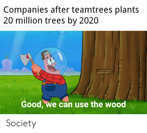 Trees: Companies after teamtrees plants  20 million trees by 2020  Good, we can use the wood Society