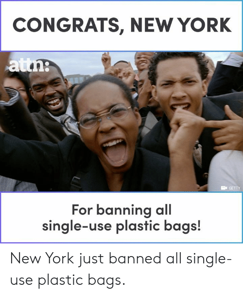 Memes, New York, and Single: CONGRATS, NEW YORK  GETTY  For banning al  single-use plastic bags! New York just banned all single-use plastic bags.