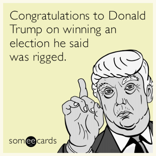Donald Trump On: Congratulations to Donald  Trump on winning an  election he said  rigged.  was  someecards