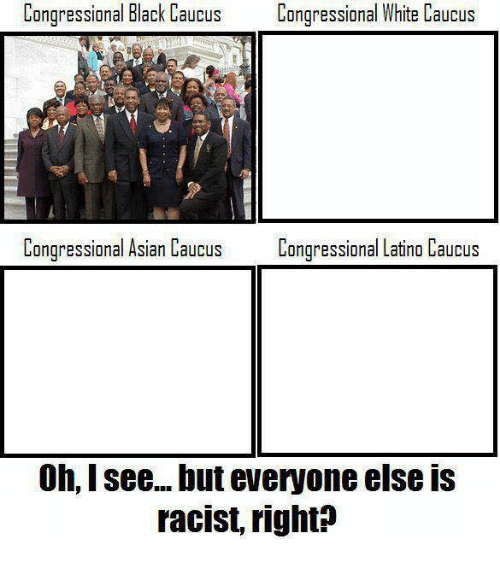 Asian, Memes, and Black: Congressional Black Caucus  Congressional White Caucus  Congressional Asian Caucus  Congressional Latino Caucus  0h, I see... but everyone else IS  racist, right?