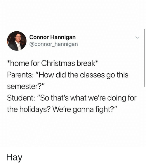 "Christmas, Memes, and Parents: Connor Hannigan  @connor_hannigarn  *home for Christmas break*  Parents: ""How did the classes go this  semester?""  Student: ""So that's what we're doing for  the holidays? We're gonna fight?"" Hay"