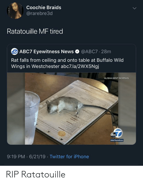 Abc7: Coochie Braids  @rarebre3d  Ratatouille MF tired  ABC7 Eyewitness News  @ABC7 28m  Rat falls from ceiling and onto table at Buffalo Wild  Wings in Westchester abc7.la/2wX5Ngj  ALISHA KENT NORMAN  abc  #abc7eyewitness  9:19 PM 6/21/19 Twitter for iPhone  . RIP Ratatouille
