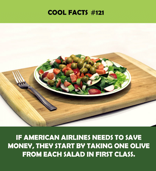 salad: COOL FACTS #121  IF AMERICAN AIRLINES NEEDS TO SAVE  MONEY, THEY START BY TAKING ONE OLIVE  FROM EACH SALAD IN FIRST CLASS.