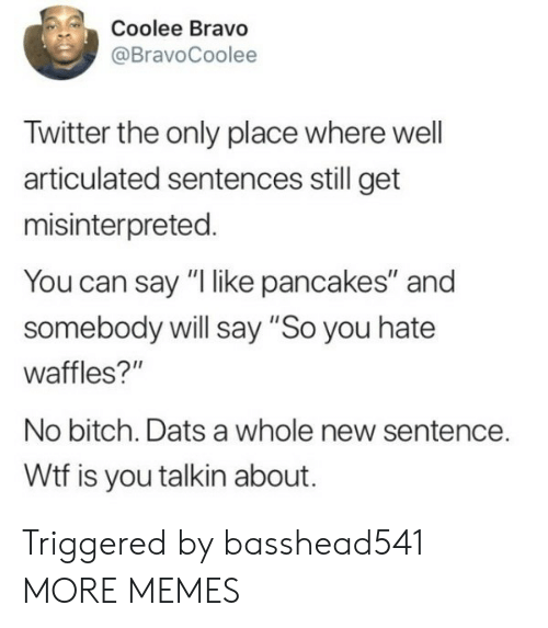 "Say So: Coolee Bravo  @BravoCoolee  Twitter the only place where well  articulated sentences still get  misinterpreted.  You can say ""I like pancakes"" and  somebody will say ""So you hate  waffles?""  No bitch. Dats a whole new sentence.  Wtf is you talkin about. Triggered by basshead541 MORE MEMES"