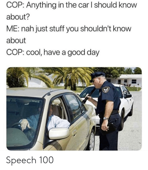 Speech: COP: Anything in the car I should know  about?  ME: nah just stuff you shouldn't know  about  COP: cool, have a good day Speech 100