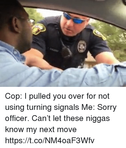 Sorry, Hood, and Next: Cop: I pulled you over for not using turning signals  Me: Sorry officer. Can't let these niggas know my next move https://t.co/NM4oaF3Wfv