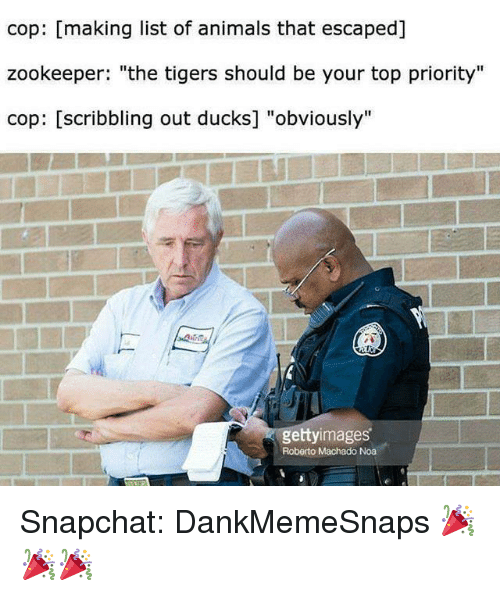 """list of animals: cop: [making list of animals that escaped]  zookeeper: """"the tigers should be your top priority""""  cop: [scribbling out ducks] """"obviously'""""  gettyimages  Roberto Machado Noa Snapchat: DankMemeSnaps 🎉🎉🎉"""