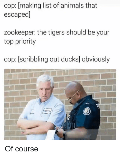 list of animals: cop: [making list of animals that  escaped]  zookeeper: the tigers should be your  top priority  cop: [scribbling out ducks] obviously Of course