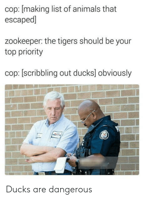 list of animals: cop: [making list of animals that  escaped]  zookeeper: the tigers should be your  top priority  cop: [scribbling out ducks] obviously Ducks are dangerous