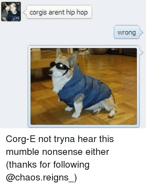 Corg: corgis arent hip hop  Wrong Corg-E not tryna hear this mumble nonsense either (thanks for following @chaos.reigns_)