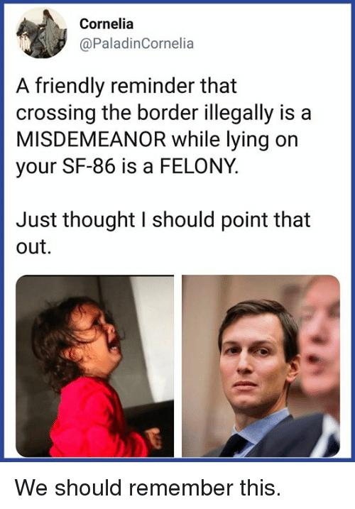Memes, Lying, and Thought: Cornelia  @PaladinCornelia  A friendly reminder that  crossing the border illegally is a  MISDEMEANOR while lying on  your SF-86 is a FELONY.  Just thought I should point that  out. We should remember this.