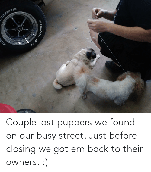 Owners: Couple lost puppers we found on our busy street. Just before closing we got em back to their owners. :)