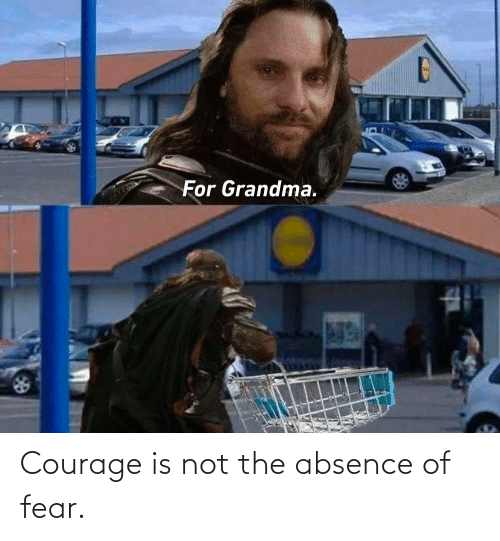Fear: Courage is not the absence of fear.
