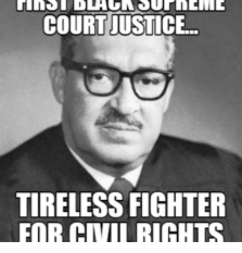 courtjustice tireless fighter for civii rights 14924793 courtjustice tireless fighter for civii rights fighter meme on