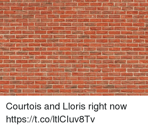 Soccer, Now, and Right Now: Courtois and Lloris right now https://t.co/ltlCIuv8Tv