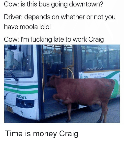 lolol: Cow: is this bus going downtown?  Driver: depends on whether or not you  have moola lolol  Cow: I'm fucking late to work Craig  @MasiPopa  ANI2672  AN 2672 Time is money Craig