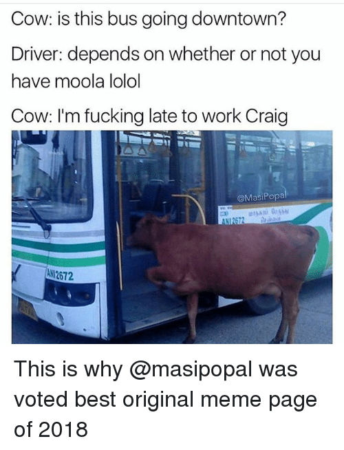 lolol: Cow: is this bus going downtown?  Driver: depends on whether or not you  have moola lolol  Cow: I'm fucking late to work Craig  @MasiPopa  aNI2672  ANI2672 This is why @masipopal was voted best original meme page of 2018