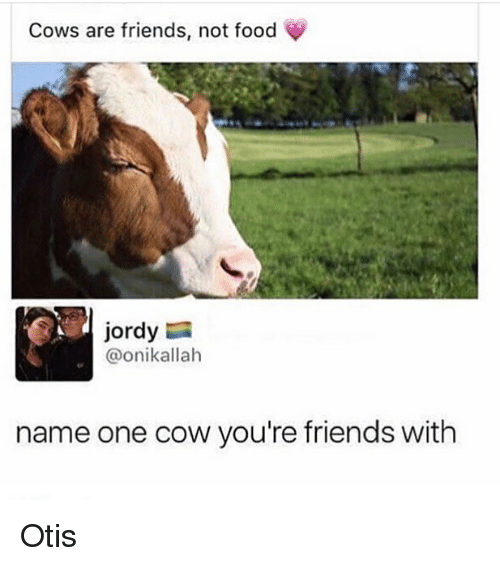 cowed: Cows are friends, not food  jordy  @onikallah  name one cow you're friends with Otis
