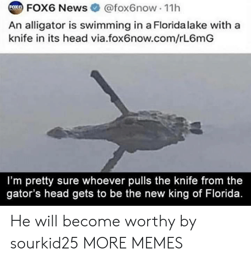 Alligator: COX FOX6 News  @fox6now 11h  An alligator is swimming in a Florida lake with a  knife in its head via.fox6now.com/rL6mG  I'm pretty sure whoever pulls the knife from the  gator's head gets to be the new king of Florida. He will become worthy by sourkid25 MORE MEMES