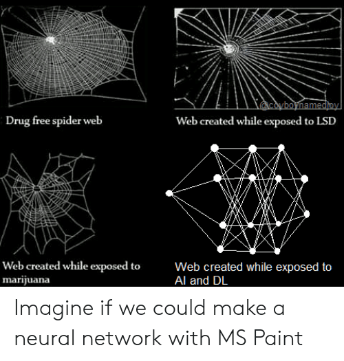 Spider, Free, and Marijuana: coyboynamedioy  Drug free spider web  Web created while exposed to LSD  Web created while exposed to  marijuana  Web created while exposed to  Al and DL Imagine if we could make a neural network with MS Paint