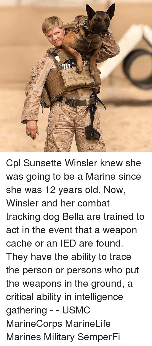 Cache: Cpl Sunsette Winsler knew she was going to be a Marine since she was 12 years old. Now, Winsler and her combat tracking dog Bella are trained to act in the event that a weapon cache or an IED are found. They have the ability to trace the person or persons who put the weapons in the ground, a critical ability in intelligence gathering - - USMC MarineCorps MarineLife Marines Military SemperFi
