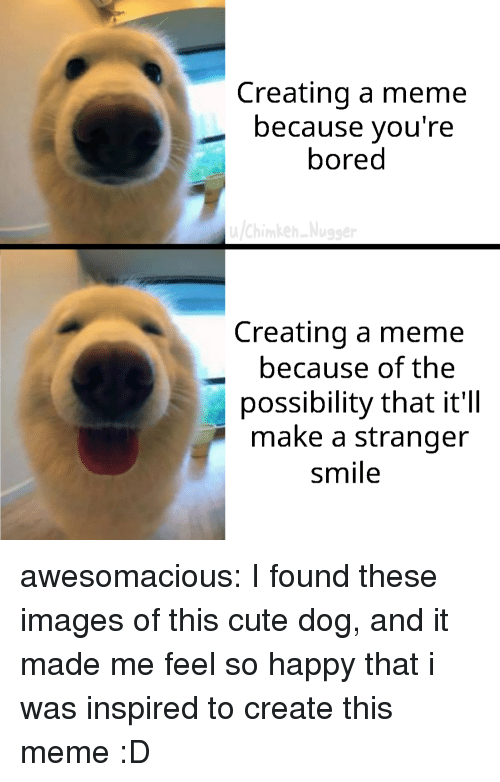 Bored, Cute, and Meme: Creating a meme  because you're  bored  Creating a meme  because of the  possibility that it'll  make a stranger  smile awesomacious:  I found these images of this cute dog, and it made me feel so happy that i was inspired to create this meme :D