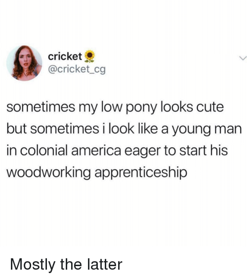 America, Cute, and Cricket: cricket  @cricket_cg  sometimes my low pony looks cute  but sometimes i look like a young man  in colonial america eager to start his  woodworking apprenticeship Mostly the latter