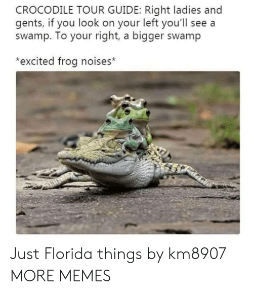 Dank, Memes, and Target: CROCODILE TOUR GUIDE: Right ladies and  gents, if you look on your left you'll see a  swamp. To your right, a bigger swamp  *excited frog noises* Just Florida things by km8907 MORE MEMES