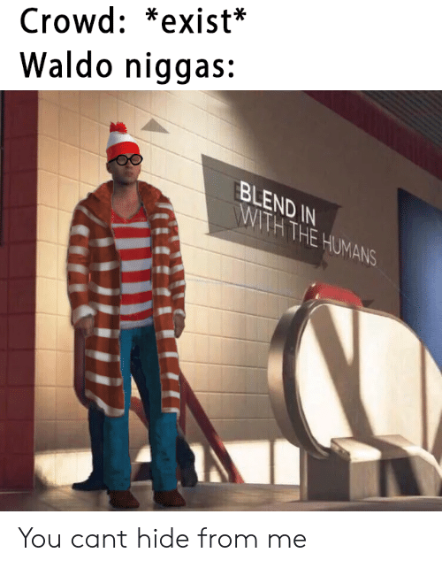 T Hide: Crowd: *exist*  Waldo niggas:  BLEND IN  WITH THE HUMANS You cant hide from me