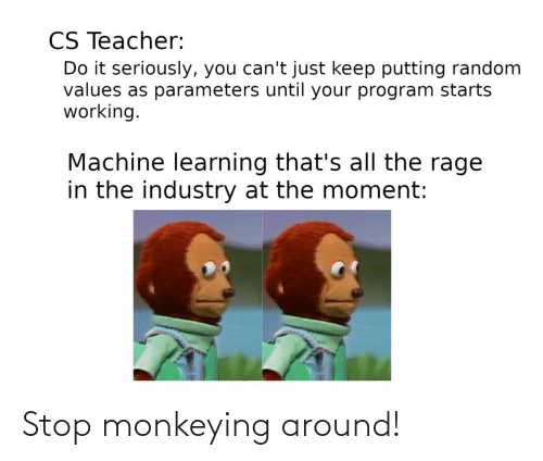rage: CS Teacher:  Do it seriously, you can't just keep putting random  values as parameters until your program starts  working.  Machine learning that's all the rage  in the industry at the moment: Stop monkeying around!