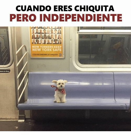 Memes, New York, and 🤖: CUANDO ERES CHIQUITA  PERO INDEPENDIENTE  NEW YORKERS KEEP  NEW YORK SAFE  ean on door