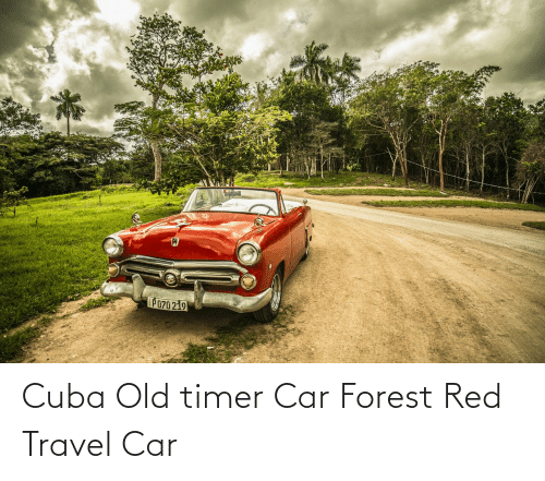 Cuba: Cuba Old timer Car Forest Red Travel Car