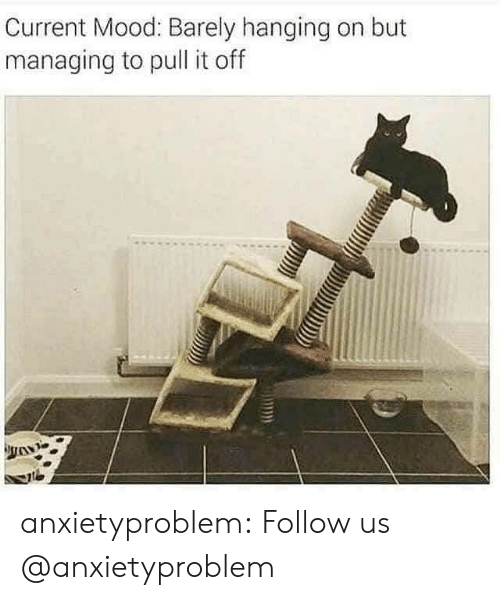 Mood, Tumblr, and Blog: Current Mood: Barely hanging on but  managing to pull it off anxietyproblem:  Follow us @anxietyproblem